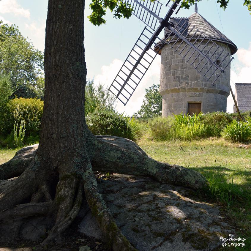 Des racines et des pierres au Yaudet