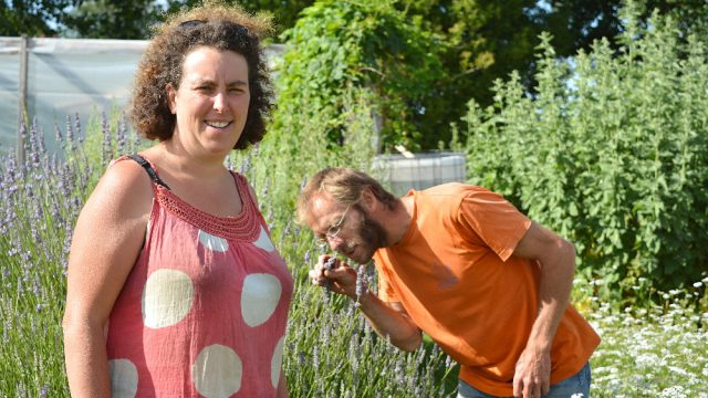 Protégé: Les Herbes Vagabondes à Ploëzal