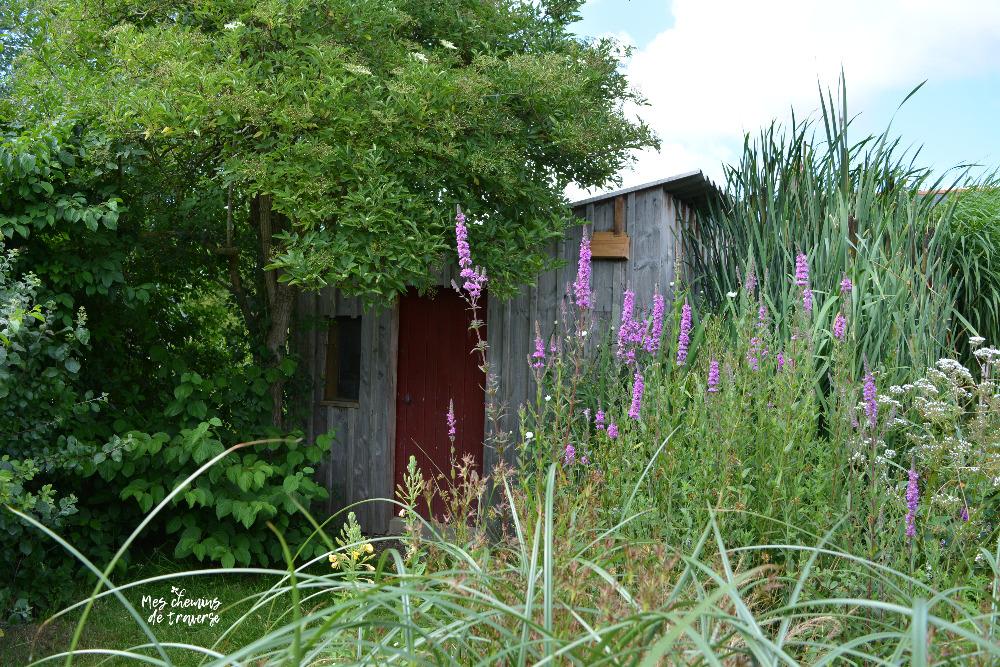 séchoir des herbes vagabondes, Ploezal, Bretagne