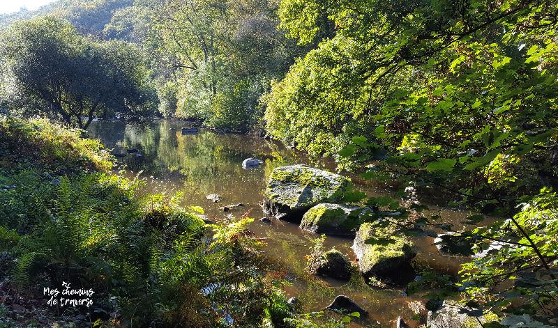 vallée du léguer en automne