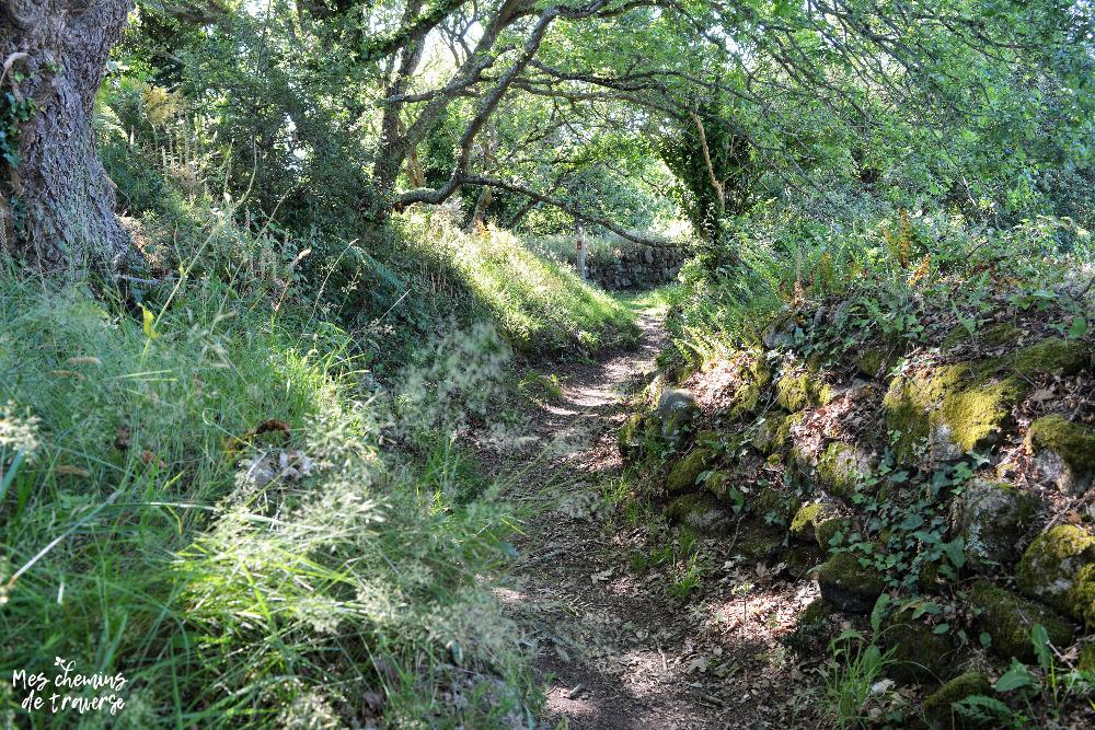 Chemin creux avec mur en pierres au Yaudet, Trégor